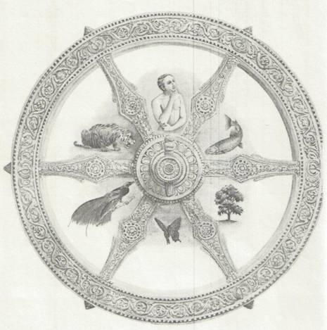 Ideja reinkarnacije, postanak čovjeka i religija - kako i zašto