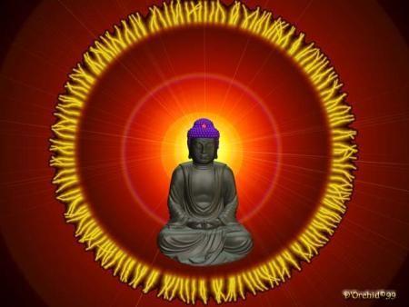 Budha biseri