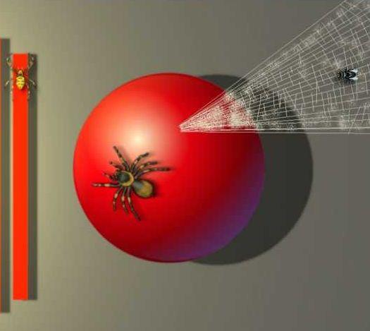 Naša stvarnost je poput holografskog interneta