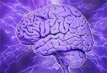Inteligencija se može povećati vježbom