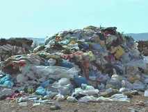 Estonci očistili nekoliko tona smeća