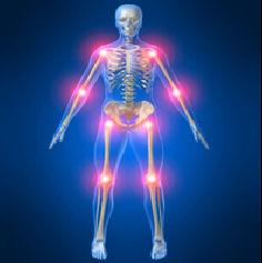 10 ludih činjenica o tijelu