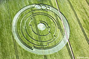 Riješen misterij krugova u žitu?!
