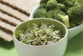 Vegetarijanci žive zdravije i duže