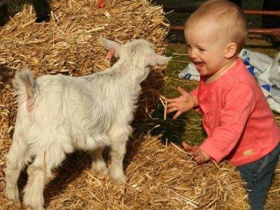 Današnja djeca su puno sretnija i društvenija...