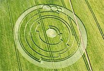 Otkriven najsloženiji krug u žitu