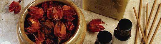 Duševni plodovi mirisa