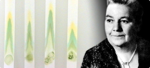Dr. Johanna Budwig – žena hrabrost
