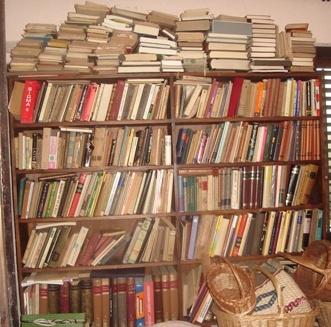 Knjige svi pišu, ne zarađuje niko