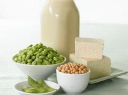 Namirnice biljnog porijekla s visokim udjelom proteina