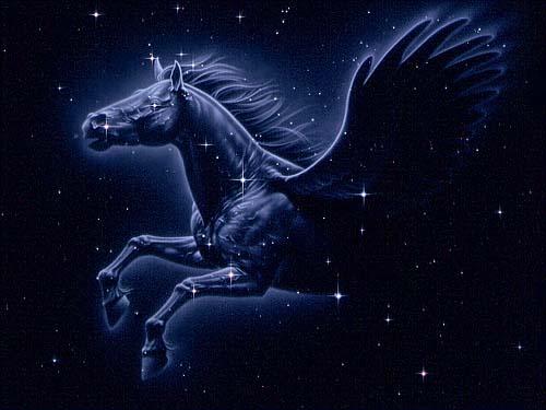 Zvjezdani let - Hvala Bojkiću!