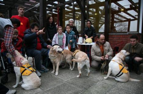 Terapijski psi pridonose napretku i razvoju djece s teškoćama u razvoju