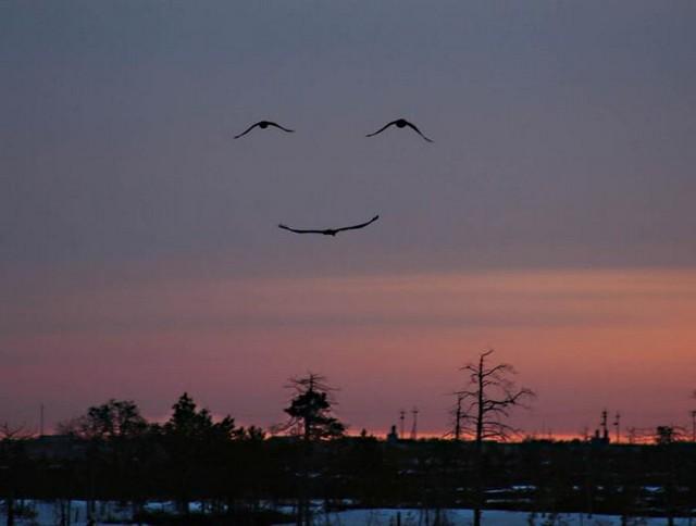 ...osmijeh...