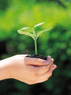 OKULTNI PRINCIPI ZDRAVLJA I LIJEČENJA - Razlozi za vegeterijansku ishranu