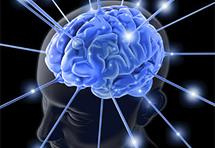 Šest metoda za povećanje mozga i njegove moći