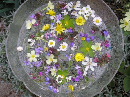 Cvjetnica i srijemuš
