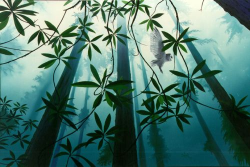 Zagrljaj šume