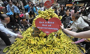Mitovi ili zašto vegetarijanstvo nije toliko zdravo...