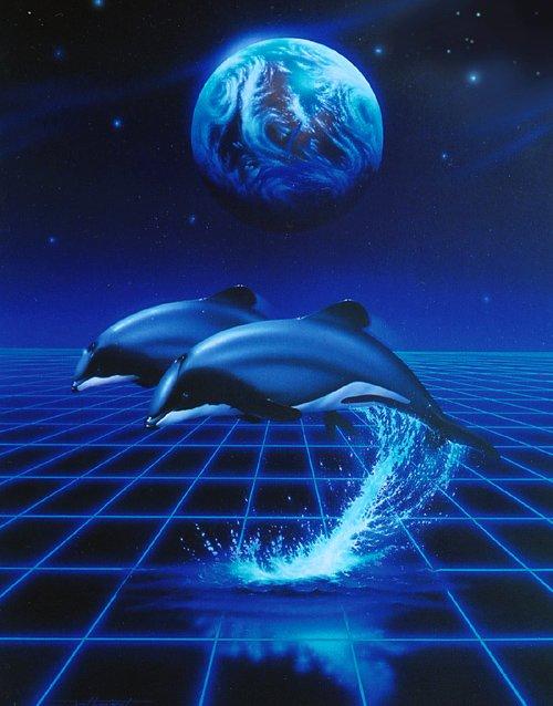 Dolphin Companion - Medwyn Goodall