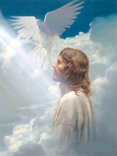 DUŠA BOŽJE SVETE RADOSTI