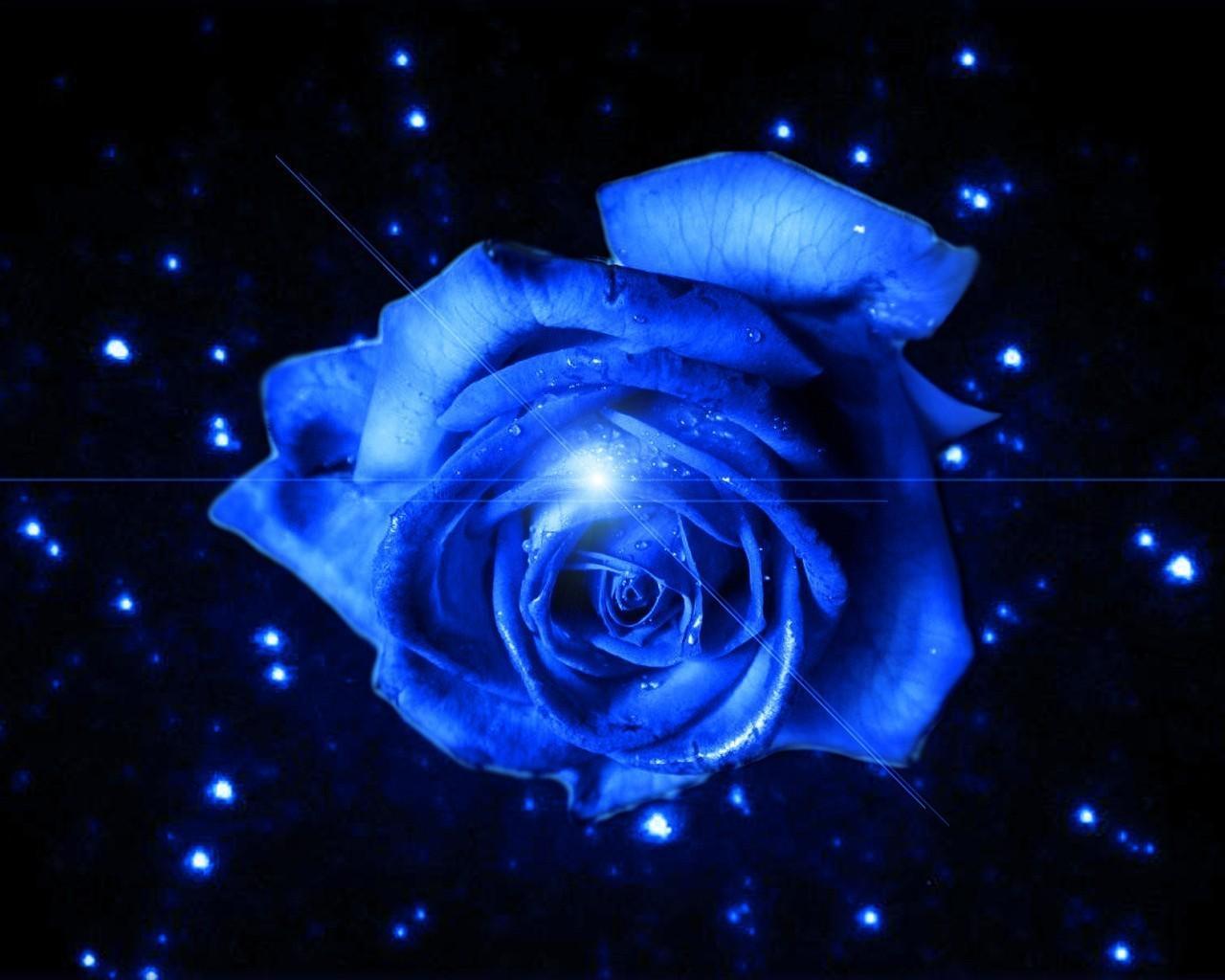 Tamno plava ili indigo boja