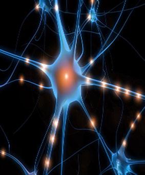 Spoznaje o zdravlju uma i tijela 2.dio