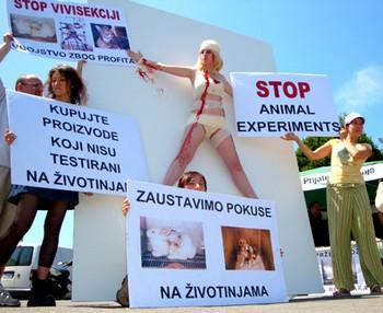 Za znanost bez pokusa na životinjama