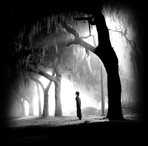 Crno-bijeli svijet