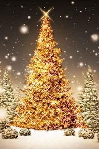 Novogodišnje darivanje Yemanja- za svoju dobru sreću