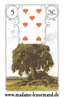 Lenormand karte - Drvo/ Srce 7