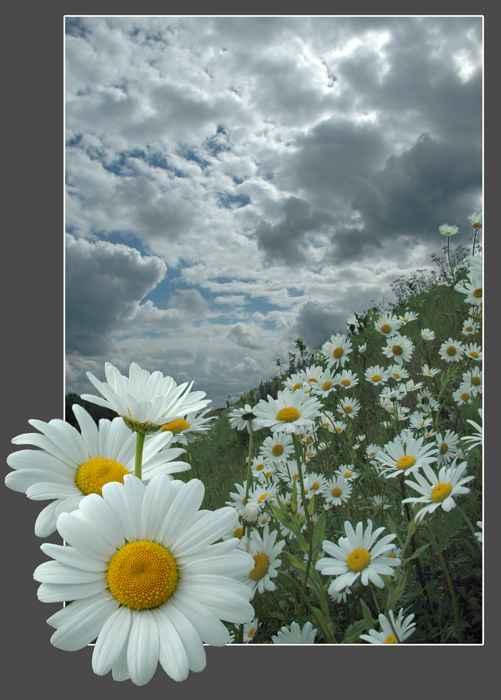 Proljeće i Uskrs zauvijek će ostati neraskidivo vezani