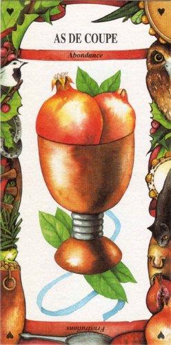Vrste karata za proricanje: Tarot des Gitans