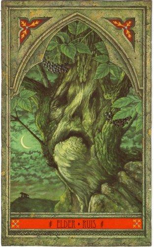 Vrste karata za proricanje: Green Man Tree Oracle