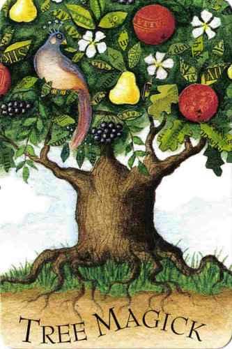 Vrste karata za proricanje: Tree Magick