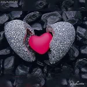 Gdje je srce tu je svijet