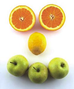 Voće je idealna hrana