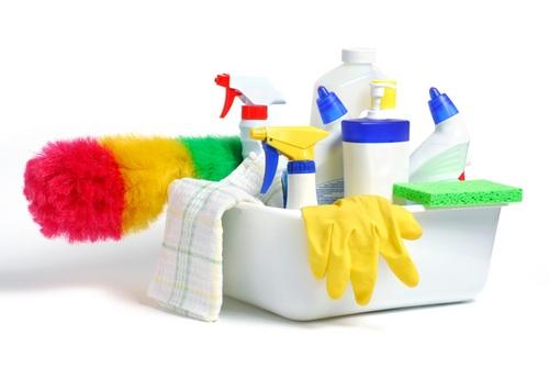 Kako dom očistiti od raznih otrova