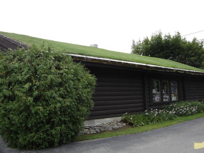 Zeleni krovovi - budućnost koju želimo...