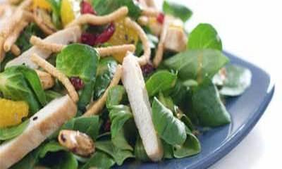 Pileća salata s povrćem