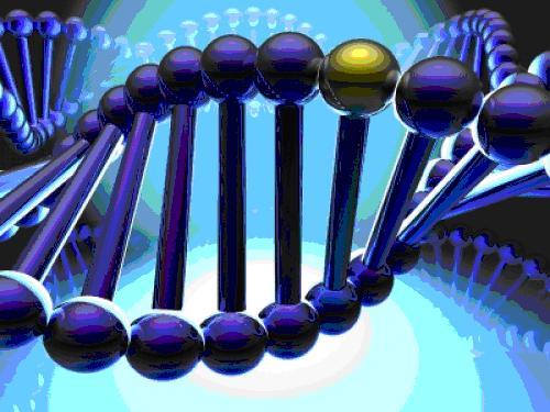Svetlom kodirana vlakna i aktivacija DNK