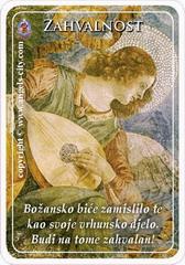 Anđeoska kartica 23.10.