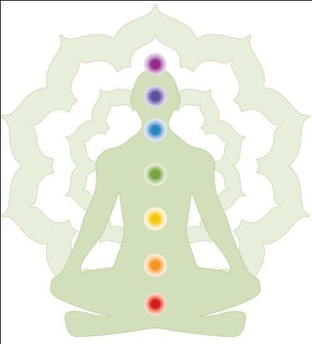Newsletter o holistickom zdravlju