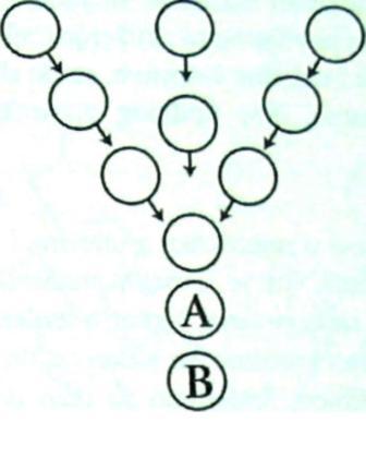 9.  Grupni rad i grupe