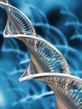 Aktivacija DNK, Regresoterapija, Meditacija, Reiki/Karuna, Rune
