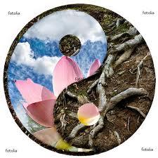 METTA SUTTA- Budhhino učenje o ljubavi, prijateljstvu i blagonaklonsti