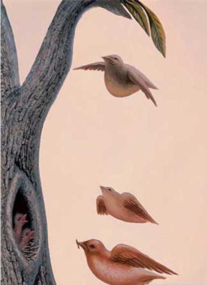 Ptice umiru pjevajući