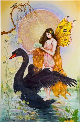 Član swan