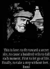 Rumi - Blago njegovog duha 187