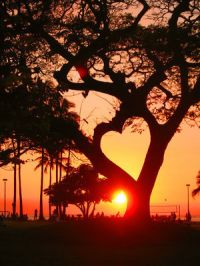 Duša sunca...