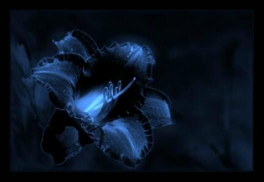 ključ mog srca na tvom dlanu...